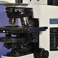 Olympus BX51 Upright DIC Darkfield Metallurgical Microscope
